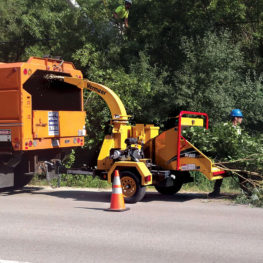 Commercial Tree Services-Polk County FL Tree Trimming and Stump Grinding Services-We Offer Tree Trimming Services, Tree Removal, Tree Pruning, Tree Cutting, Residential and Commercial Tree Trimming Services, Storm Damage, Emergency Tree Removal, Land Clearing, Tree Companies, Tree Care Service, Stump Grinding, and we're the Best Tree Trimming Company Near You Guaranteed!