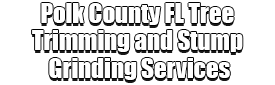 Polk County FL Tree Trimming and Stump Grinding Services Logo-We Offer Tree Trimming Services, Tree Removal, Tree Pruning, Tree Cutting, Residential and Commercial Tree Trimming Services, Storm Damage, Emergency Tree Removal, Land Clearing, Tree Companies, Tree Care Service, Stump Grinding, and we're the Best Tree Trimming Company Near You Guaranteed!